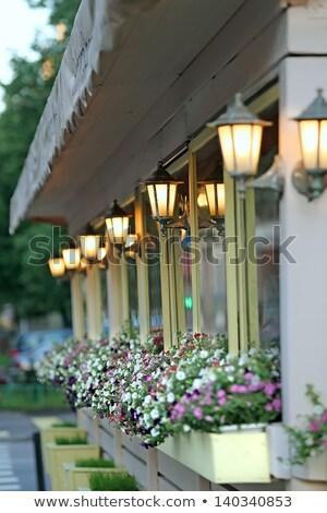 Foto d'archivio: Classico · giardino · lampada · fioritura · vecchio · colorato