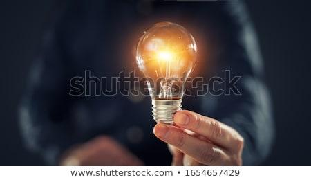 Férfiak villanykörte kaukázusi felnőtt azonos iker Stock fotó © iofoto