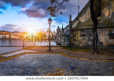 eski · sokak · Prag · dar · şafak · ev - stok fotoğraf © stevanovicigor