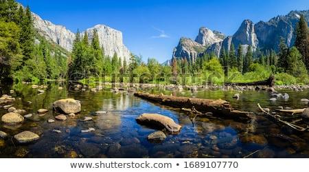 風景 · 山 · 草原 · ヨセミテ国立公園 · 美しい · 滝 - ストックフォト © hlehnerer