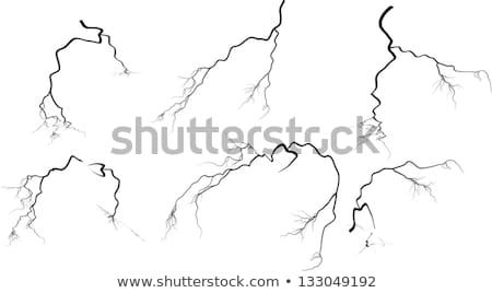 Vector Lightning Bolts Image Collection Stock photo © chromaco