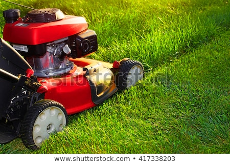 Mow the lawn Stock photo © stevemc