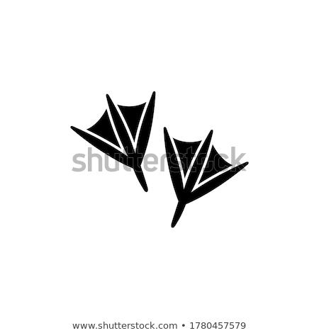 Goose silhouettes set Stock photo © Kaludov