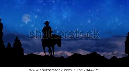лошади ночь фон животного мех иллюстрация Сток-фото © ajlber