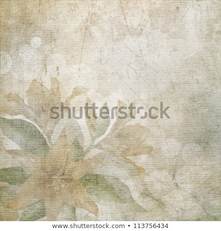 Old scratched paper with flowers background. Stock photo © Leonardi