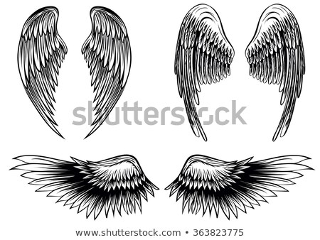 Tribal · adelaar · banner · majestueus · tattoo · stijl - stockfoto © creative_stock