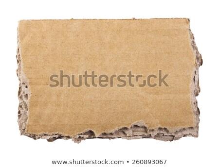 recycleren · tekst · gescheurd · papier · aarde · vel · gesneden - stockfoto © borysshevchuk
