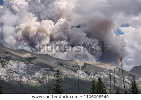 Humo nube incendios forestales distante fuego Foto stock © pancaketom