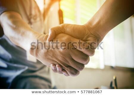 Jovem sócio aperto de mãos tratar negócio Foto stock © wavebreak_media