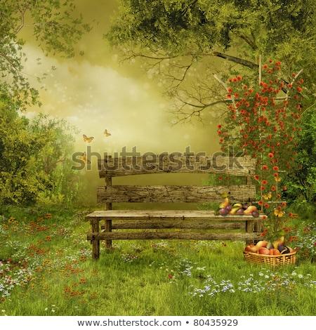 Vieux bois banc village verger vide Photo stock © Zhukow