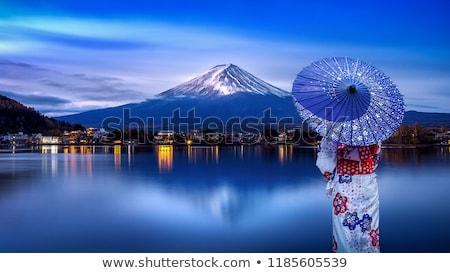 Japonya geyşa kelime bulutu telefon sanayi bilim Stok fotoğraf © Refugeek