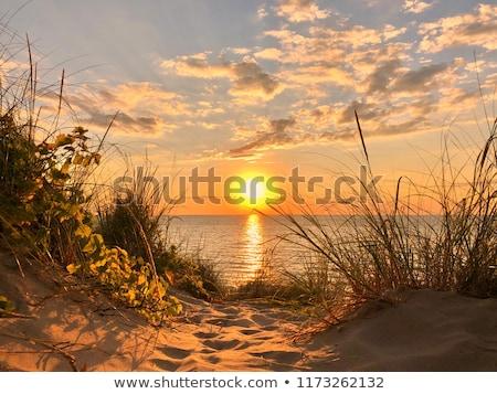 Costa lago Michigan azul viaje rock Foto stock © saddako2