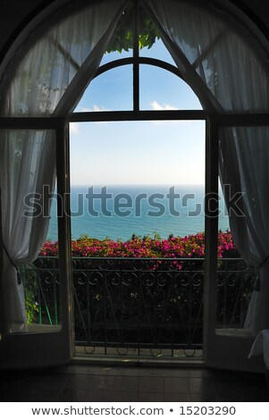Ver varanda porta mar flor casa Foto stock © zzve