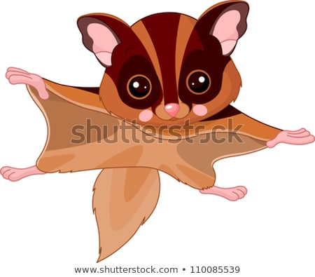 fun zoo illustration of cute flying squirrel stock photo © nik187