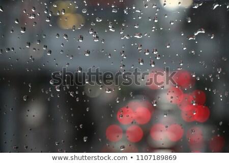autó · eső · fotó · nedves · naplemente · fény - stock fotó © taden