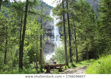 waterfall in alps Stock photo © w20er