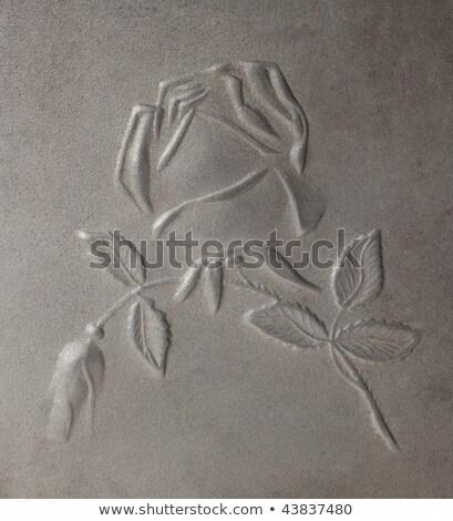 rozen · metaal · steeg · natuur · ontwerp · schoonheid - stockfoto © ddvs71