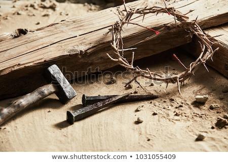 Espinho coroa branco madeira cristo Foto stock © AndreyKr
