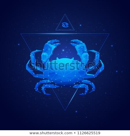 Horoskop podpisania zodiak raka czarny tatuaż Zdjęcia stock © aliaksandra