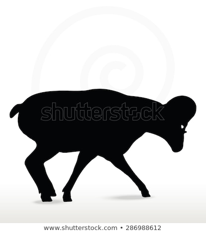 big horn sheep  silhouette in down the hill pose  Stock photo © Istanbul2009