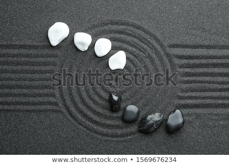 Zwarte zen stenen groen blad tabel water Stockfoto © neirfy