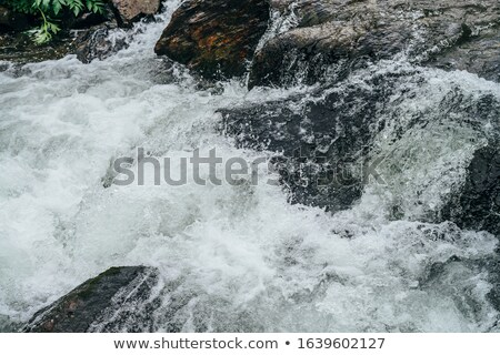 frozen surface of a  mountain stream Stock photo © taviphoto