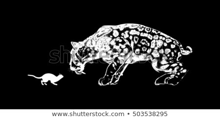 Cat Versus Sabretooth Stock photo © kentoh