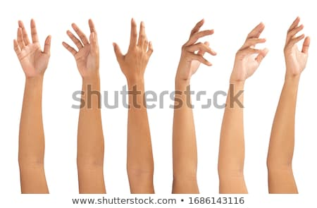 close up of hand showing five fingers stock photo © dolgachov