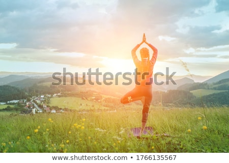 fitness and stretching are good for a healty girl stock photo © giulio_fornasar