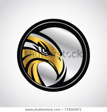 Hawk, Eagle, Falcon. Stock photo © HunterX