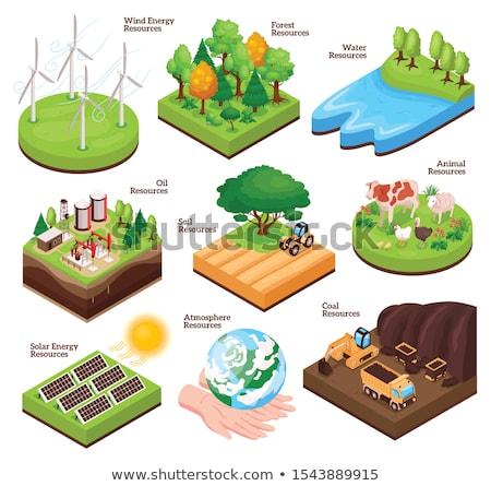 Terra recursos ilustração natureza paisagem montanha Foto stock © bluering