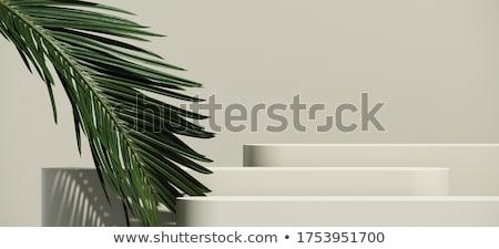 Podium fond chambre bleu intérieur publicité Photo stock © SArts