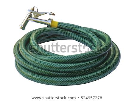 Garden hose Stock photo © jagoda