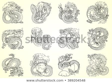 Contour of the Dragon Stock photo © liolle