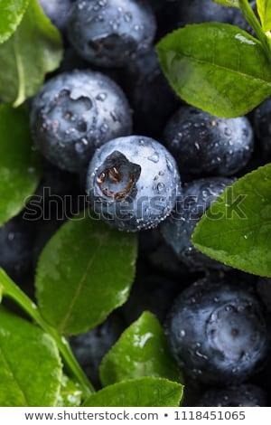 fresh ripe blueberries stock photo © lightpoet