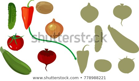 Find the right shade cucumber Stock photo © Olena