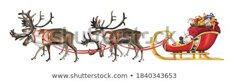 Natale acquerello illustrazione renne vettore vernice Foto d'archivio © Sonya_illustrations