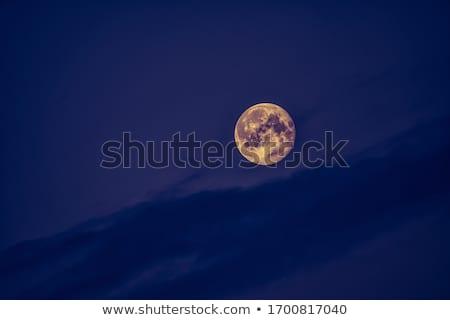 ciel · lune · espace · nuage · rose · décembre - photo stock © suerob