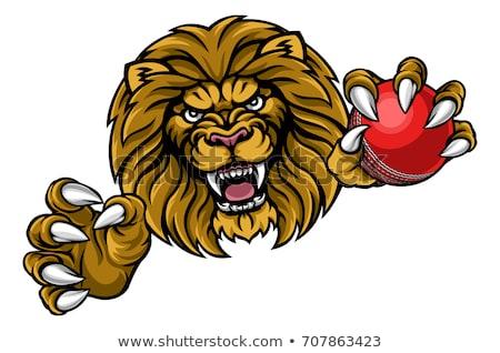 ストックフォト: ライオン · クリケット · ボール · スポーツ · マスコット · 怒っ