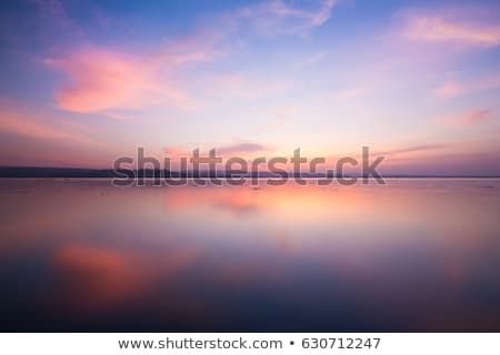 Stock photo: Light green trees by a lake in evening sunlight