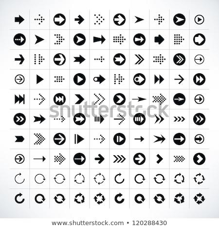 Vektor háló alkotóelem körkörös gomb ikon Stock fotó © rizwanali3d