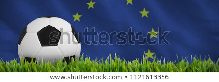 Black and white football against close-up of grass mat Stock photo © wavebreak_media