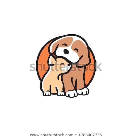 Rajz állatorvos macska kutya betűk felirat Stock fotó © Krisdog