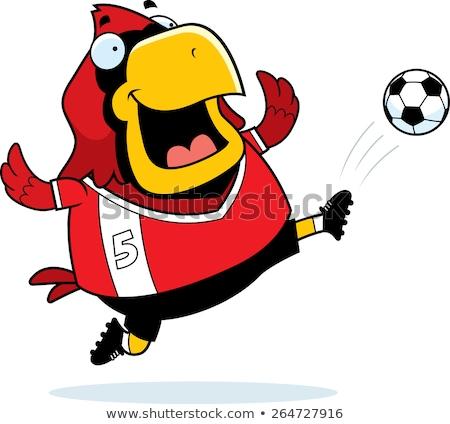 Cartoon calcio calci illustrazione calci soccer ball Foto d'archivio © cthoman
