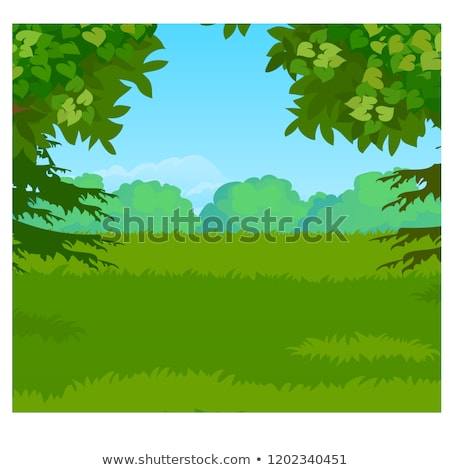 Landscape with forest on the horizon and green grass meadow. Vector cartoon close-up illustration. Stock photo © Lady-Luck