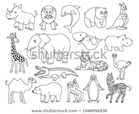 Tier Gliederung Tiger Illustration Natur Hintergrund Stock foto © colematt