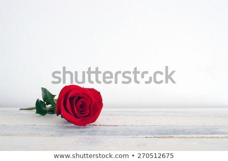 ストックフォト: 赤いバラ · 白 · 木製のテーブル · 日 · 女性