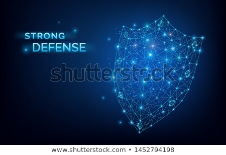 Blue lowpoly Security system Shield. Strong defense sign. Data protection, company security service, Stock photo © MarySan