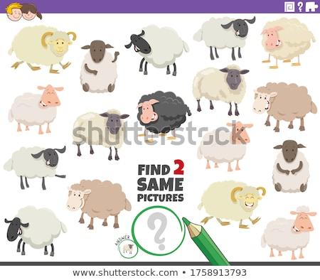 talál · kettő · azonos · farm · állatok · oktatási · játék - stock fotó © izakowski