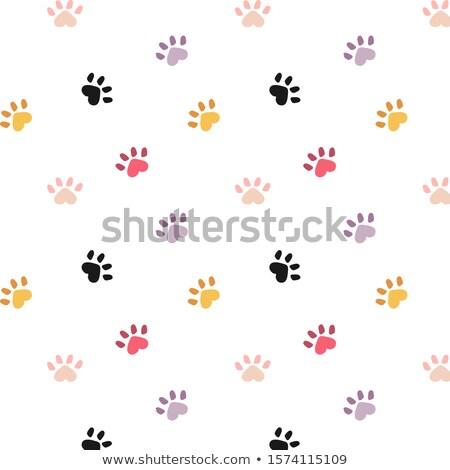 кошки следов коллекция дизайна стиль бесшовный Сток-фото © Decorwithme